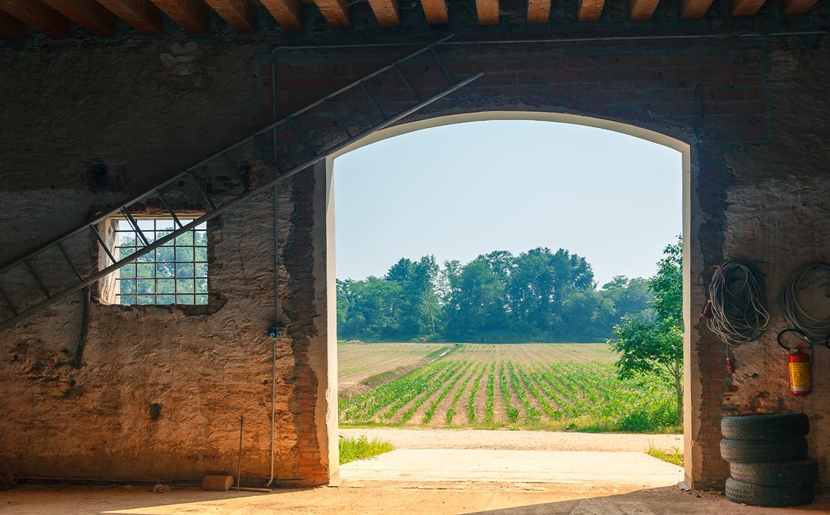 Ackerbau in Niedersachsen kaufen