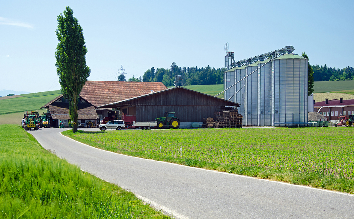 11075 Milchviehbetrieb im Rheinland