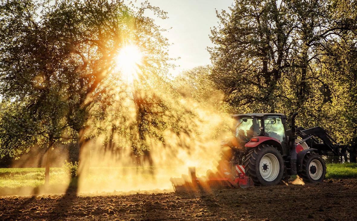 11121 Ackerfläche in den Niederlanden sucht Investor